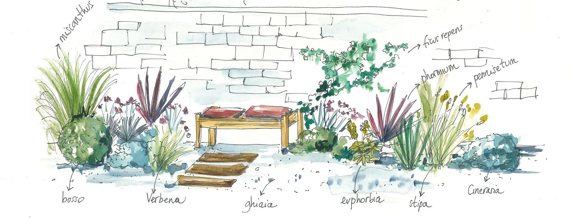 Piante Erbacee Perenni Da Ombra il calicanto - piante e fiori a firenze: un vivaio per tutte